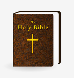 holy bible vintage leather brown book vector image vector image