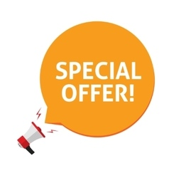 Spacial offer isolated on vector image vector image