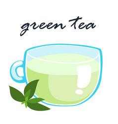 Hot green tea healthy berverange vector