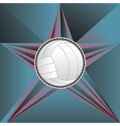 Volleyball ball on rays background4 vector