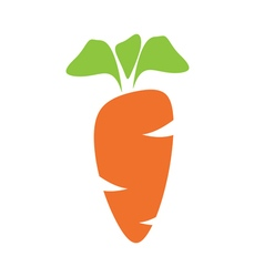 Juicy carrot vector