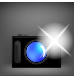 Digital camera and flash isolated vector