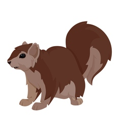 Another squirrel vector