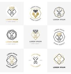 Lion diamond emblems vector