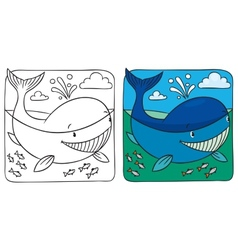 Little whale coloring book vector image vector image