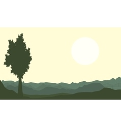 One tree on hill backgrounds of scenery vector