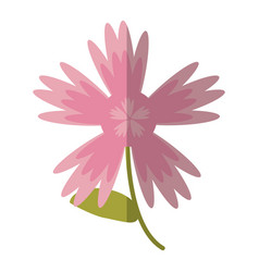 cartoon pink flower spring decoration vector image