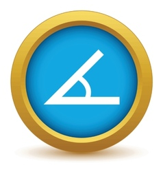 Gold sign of the angle icon vector image