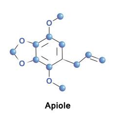 apiole is phenylpropene apiol vector image