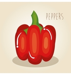 peppers fresh vegetables icon vector image