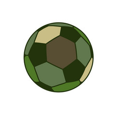 army sport ball isolated green military balls for vector image vector image