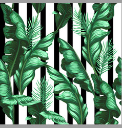 Banana leaves pattern tropical background vector
