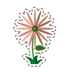 Cartoon flower celebration women day shadow vector