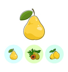 Fruit icons pear papaya quince vector