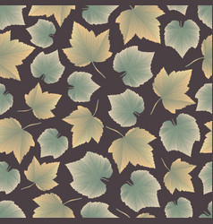 leaves collect-03 vector image vector image