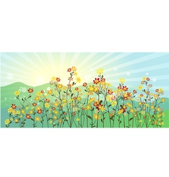 The green meadow with flowers vector image