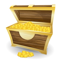 treasure chest with gold coin vector image