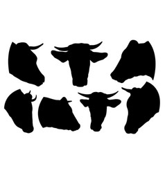set of cow heads vector image