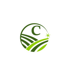 Green project solution center initial c vector