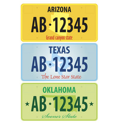 registration plates of united states vector image vector image