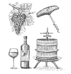 Press for grapes sketch corkscrew wine bottle and vector