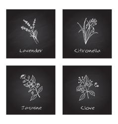 Handdrawn - Health and Nature Set vector image