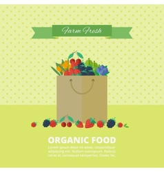 Banner with fresh berries and fruits concept vector