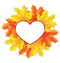 Maple leaves in the frame in the shape of heart vector
