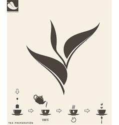 Tea preparation leaf vector