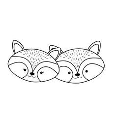 line cute raccoon head animal couple together vector image vector image