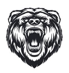 Roaring bear vector