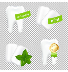 stomatologic set vector image