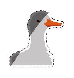 Duck farm animal vector