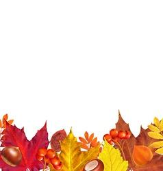 Autumn border vector