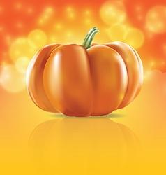 Pumpkin in light vector