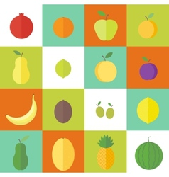 Flat elements for web design fruits vector