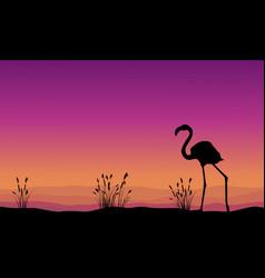 Collection stock flamingo silhouette scenery vector