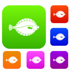 Flounder set color collection vector
