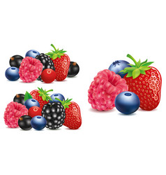 Group of strawberry blueberry raspberry vector