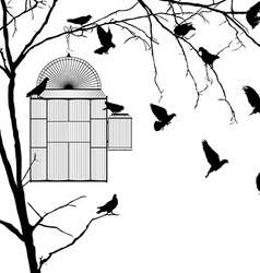 Bird cage silhouettes vector image