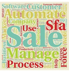 Sales Process What Can You Automate text vector image vector image