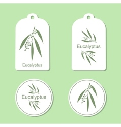 Silhouette of eucalyptus with leaves medicinal vector
