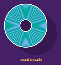 structure skeletal muscle anatomy vector image