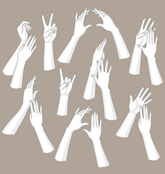 woman hands set vector image vector image