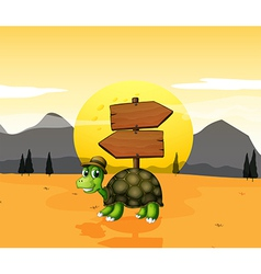 A turtle in the desert near the arrowboards vector image vector image