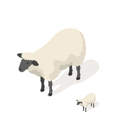 Isometric 3d of sheep vector image vector image