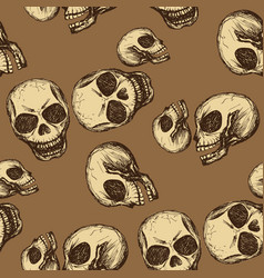seamless pattern hand drawing skull vector image