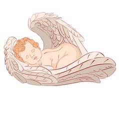 Sleeping angel vector