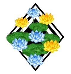 Natural background with lotus flowers and leaves vector