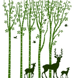 Birch Tree with Deer vector image vector image